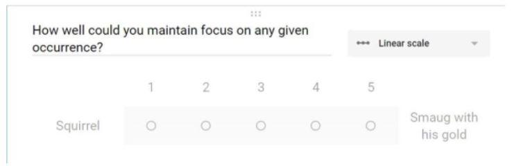 Focus Scale